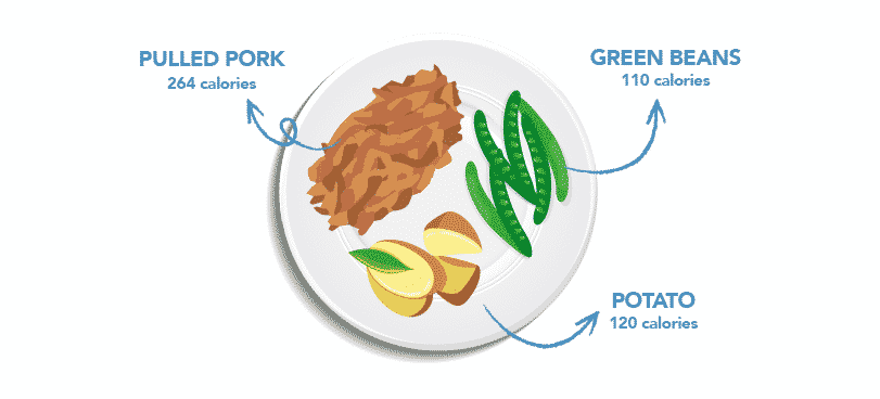 healthy plate ideas_pulled pork